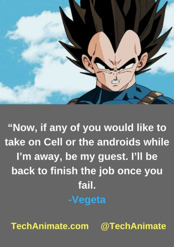Now-if-any-of-you-would-like-to-take-on-Cell-or-the-androids-while-Im-away-be-my-guest-Ill-be-back-to-finish-the-job-once-you-fail