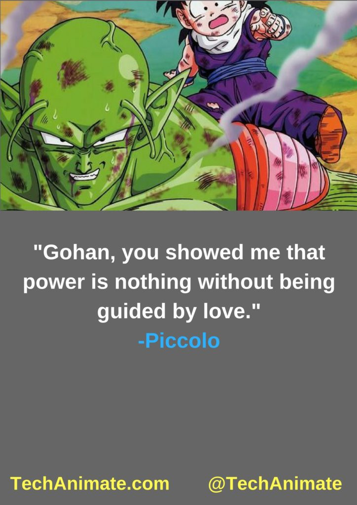 Gohan, you showed me that power is nothing without being guided without love.