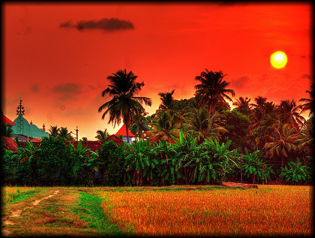dream vacation in indonesia