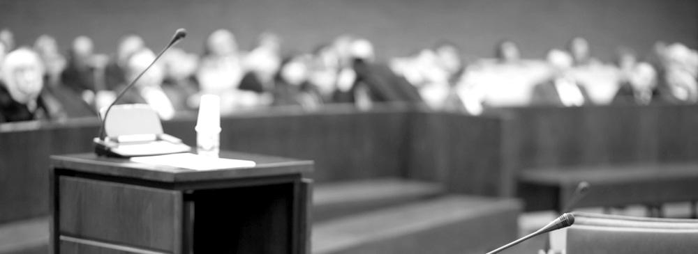 litigationlawyer