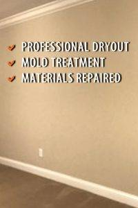 Water damage contractor and mold removal specialist