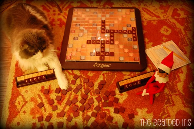 Dobbie plays Scat Scrabble #InappropriateElf by The Bearded Iris