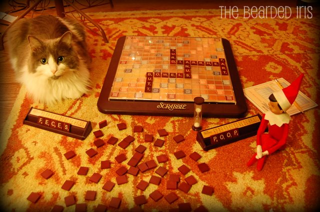 Dobbie plays Scat Scrabble2 #InappropriateElf by The Bearded Iris