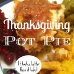 thanksgiving pot pie by the bearded iris