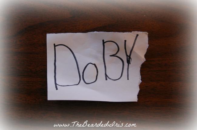 Bucket Heads first note to our elf Dobbie via The Bearded Iris