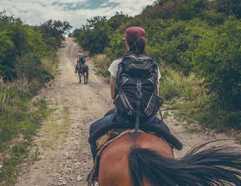 Group horseback riding on a trail.