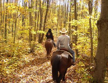 Group on horseback riding through an autumn forest.