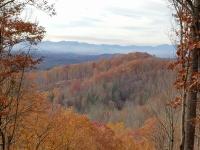 Fall Foliage at Mountain Meadows