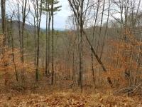 Fall season at Mountain Meadows