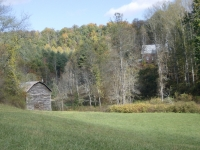 lot-19b-view-over-pasture