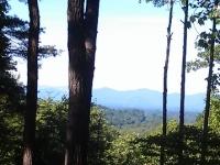 lot-6b-window-view-south
