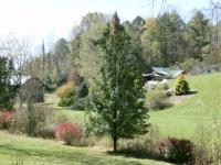 mountain-meadows-farm-in-the-spring