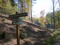 signpost-for-our-daughters-maddie-amanda