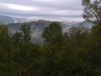 top-of-foggy-mountain