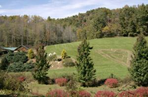 Sandy & Bernie's Mountain Meadows Farm