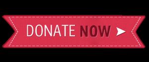 christmas-donate-button-300x125