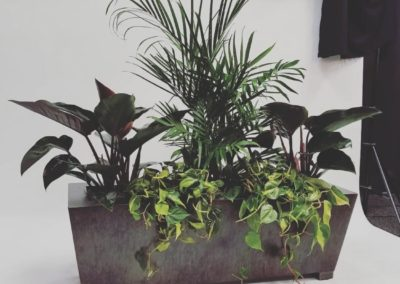 Custom steel planter for commercial or residential entry way