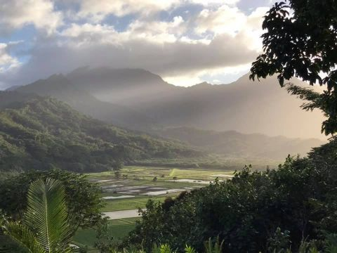 KAUAI EXPERIENCES: THINGS TO DO, SEE AND EAT!!
