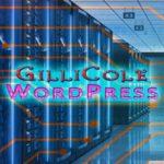 Low Cost Website WordPress Hosting