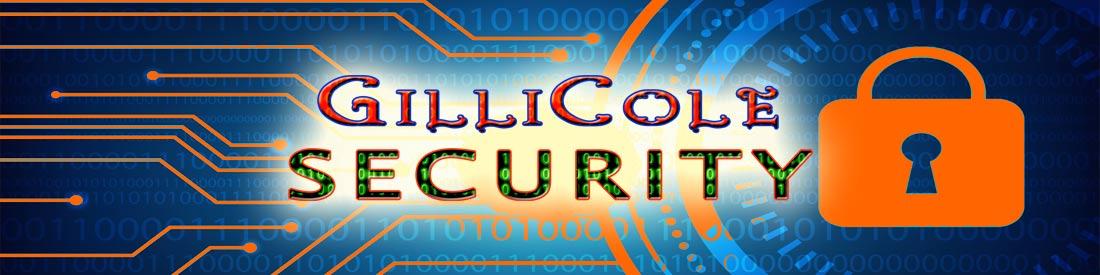 Get website SSL security backup for less