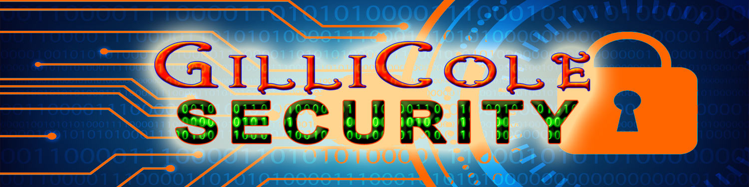 Website security products SSL Backup