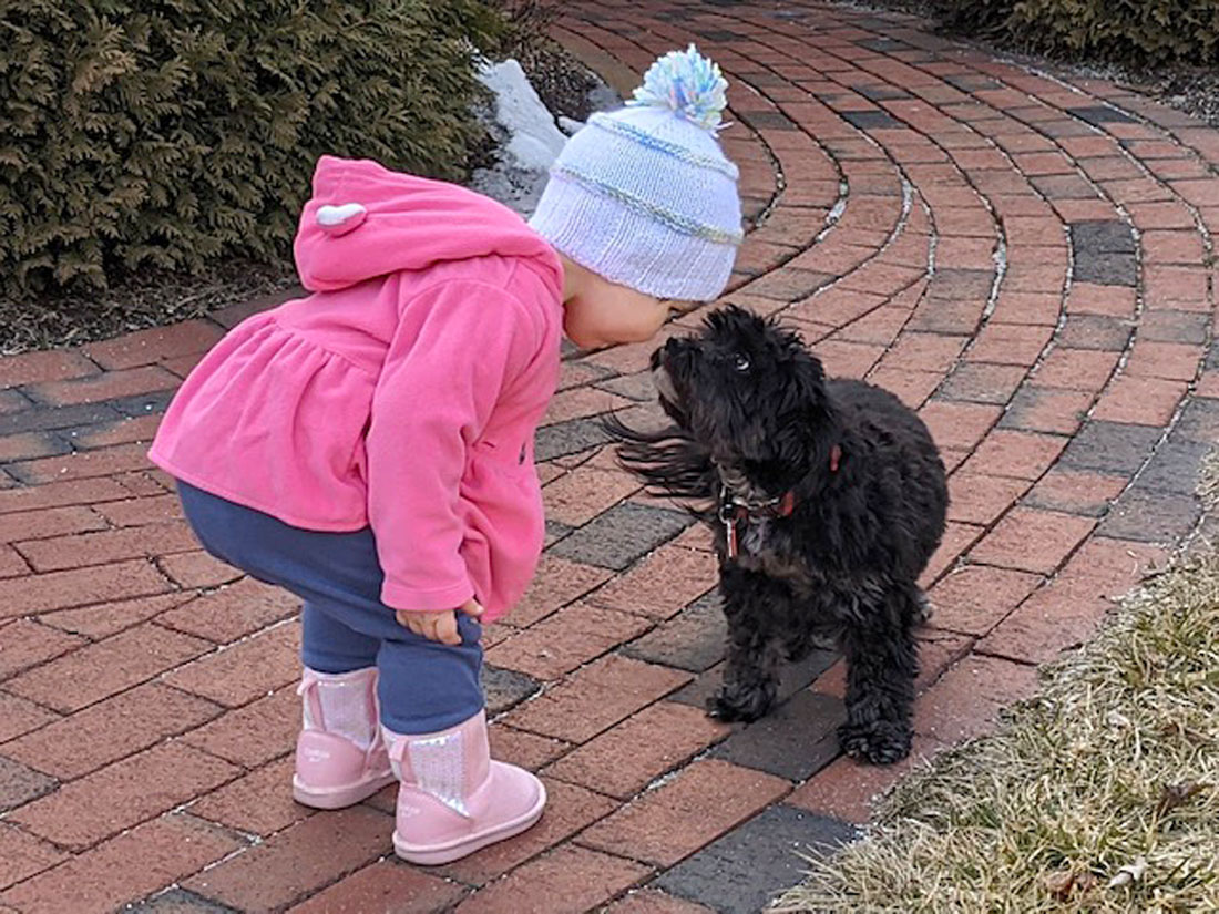 Marian H. sent a picture of her neighbor Lexi having a moment with Marian's dog Winni; looks cute and cozy!