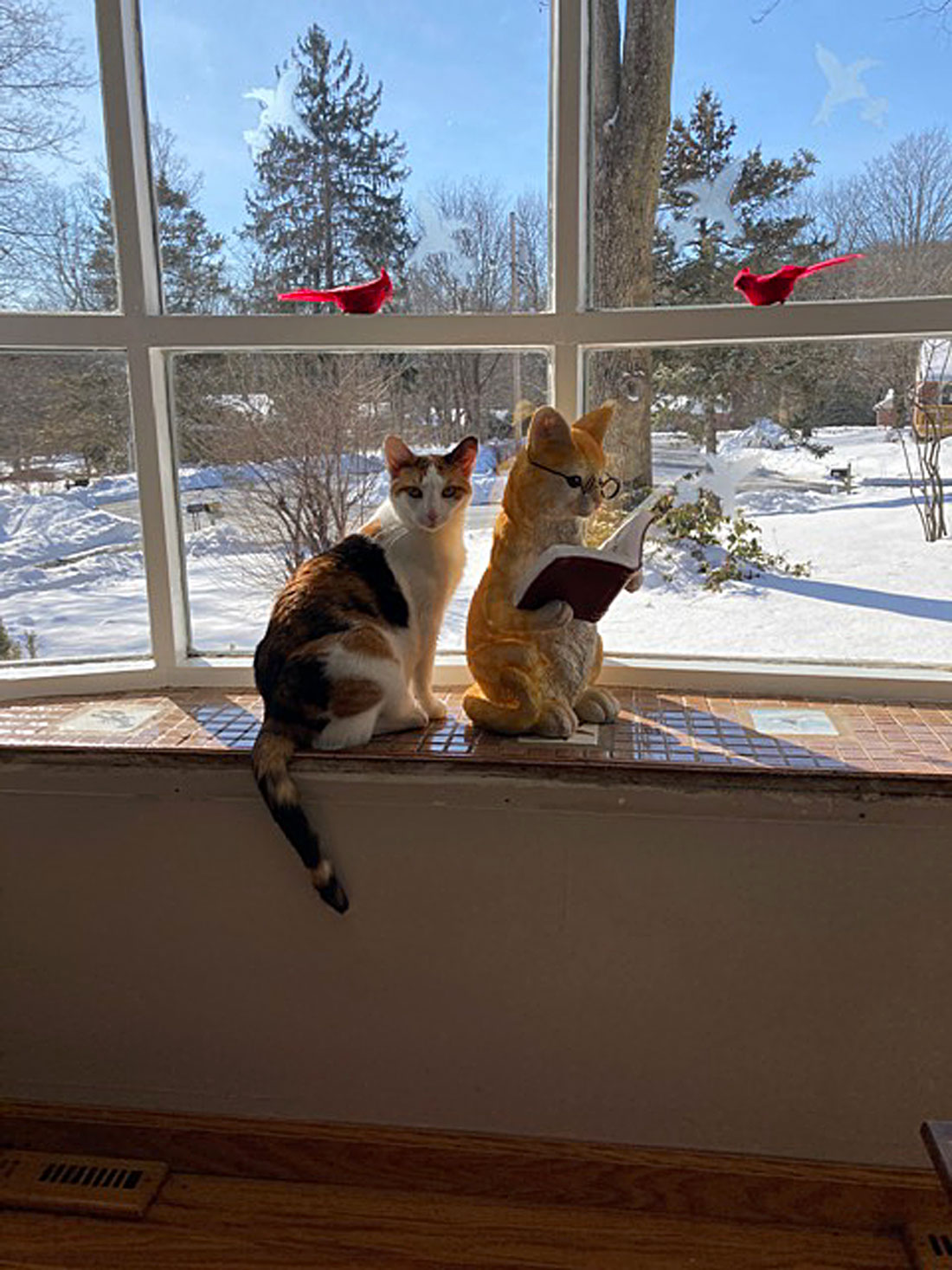 """This is our rescue, Molly, who has been a wonderful addition to our family! She is three years old and has taken a liking to reading in the window with her """"friend"""", a wonderful ceramic cat statue! – Heloise."""