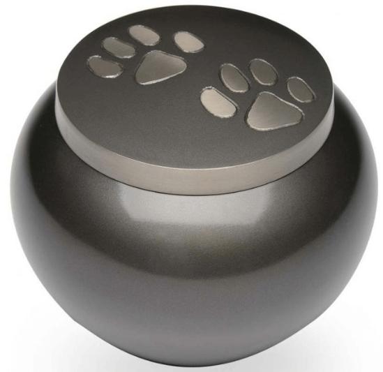 Double Paw Print Brass Pet
