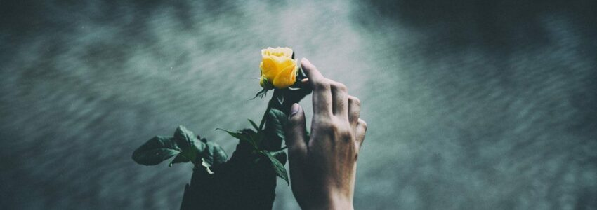 Woman throwing flowers while scattering ashes at sea