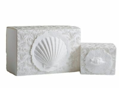 A small shell box biodegradable urn for scattering ashes at sea