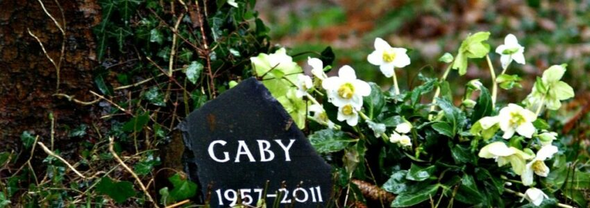 A gravestone memorial on top of a buried cremation ashes.