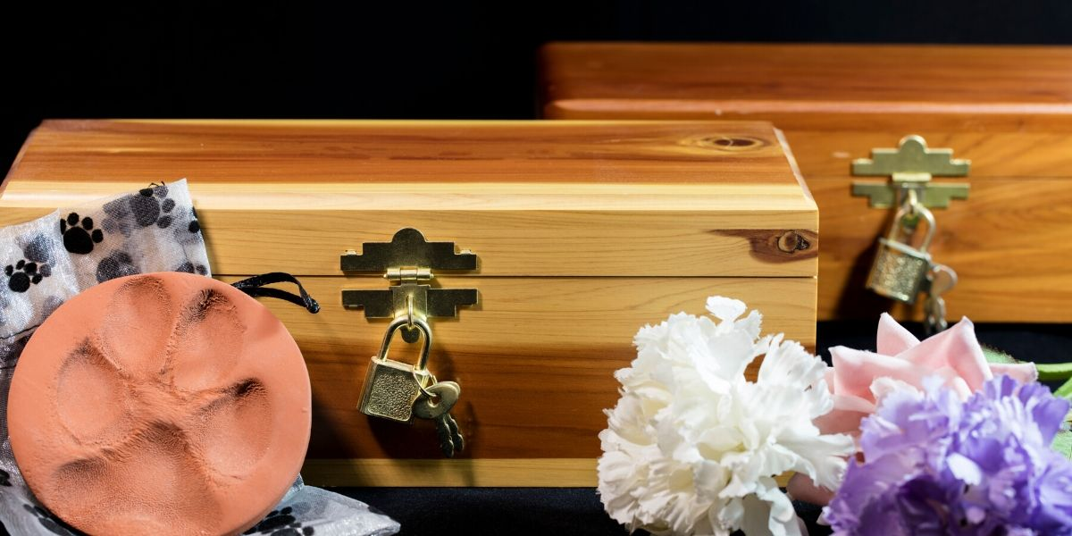 Coping With the Death of a Beloved Pet