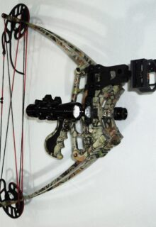 Delta bow compact hunting bow
