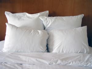 Green Elite   Clean Pillows Blog