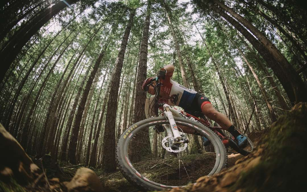 BC Bike Race Tire Selection