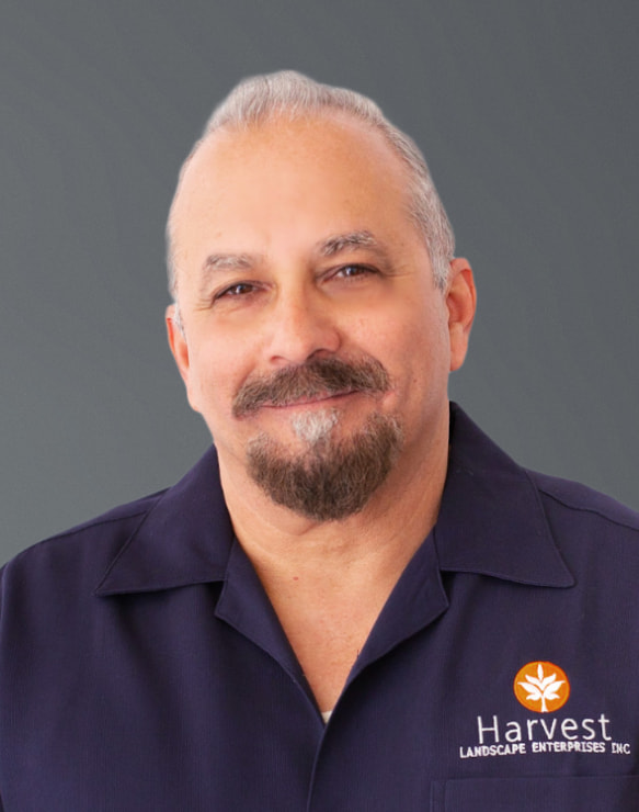 Dave Ramos