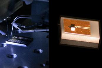 350px-chip-3