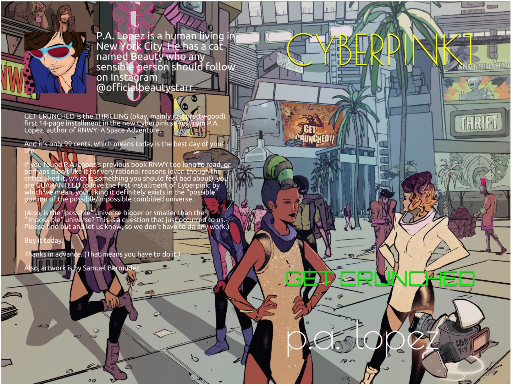 cyberpink-book-series