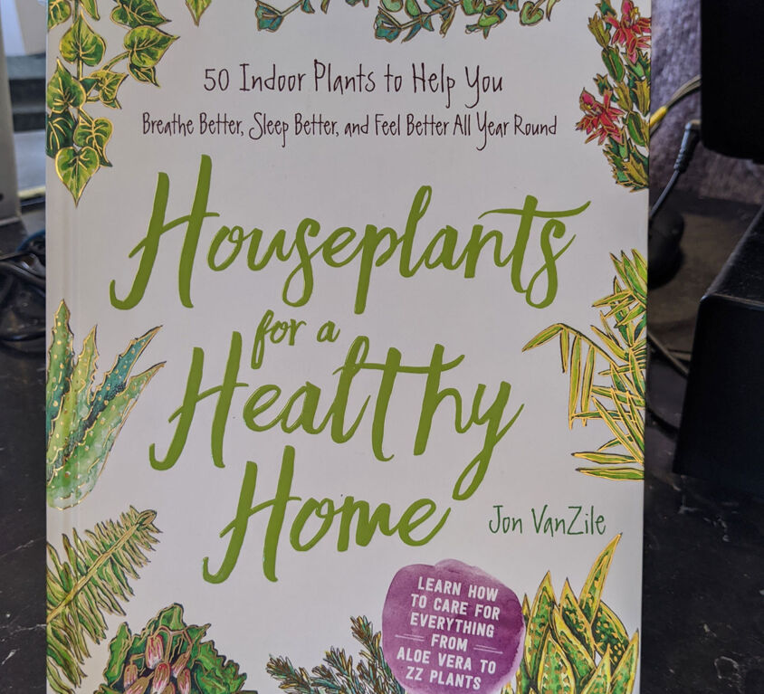 Houseplant Books @ Book Mark
