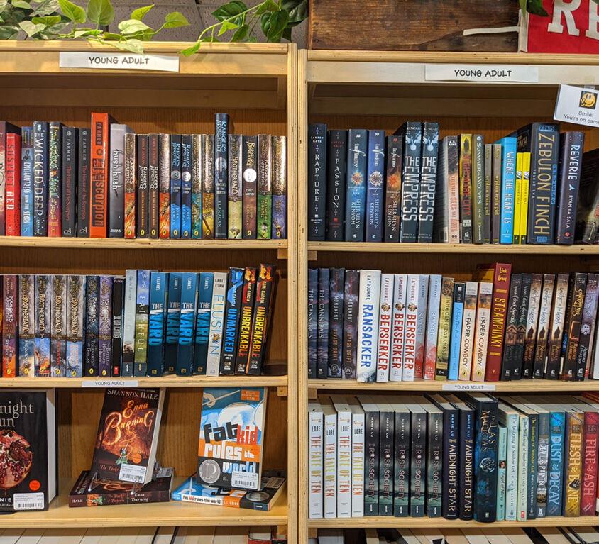 Young Adult Books @ Windowsill