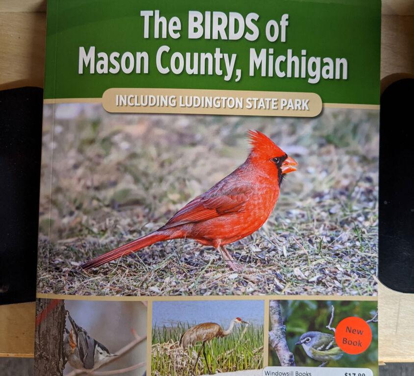 Bird Book @ Windowsill
