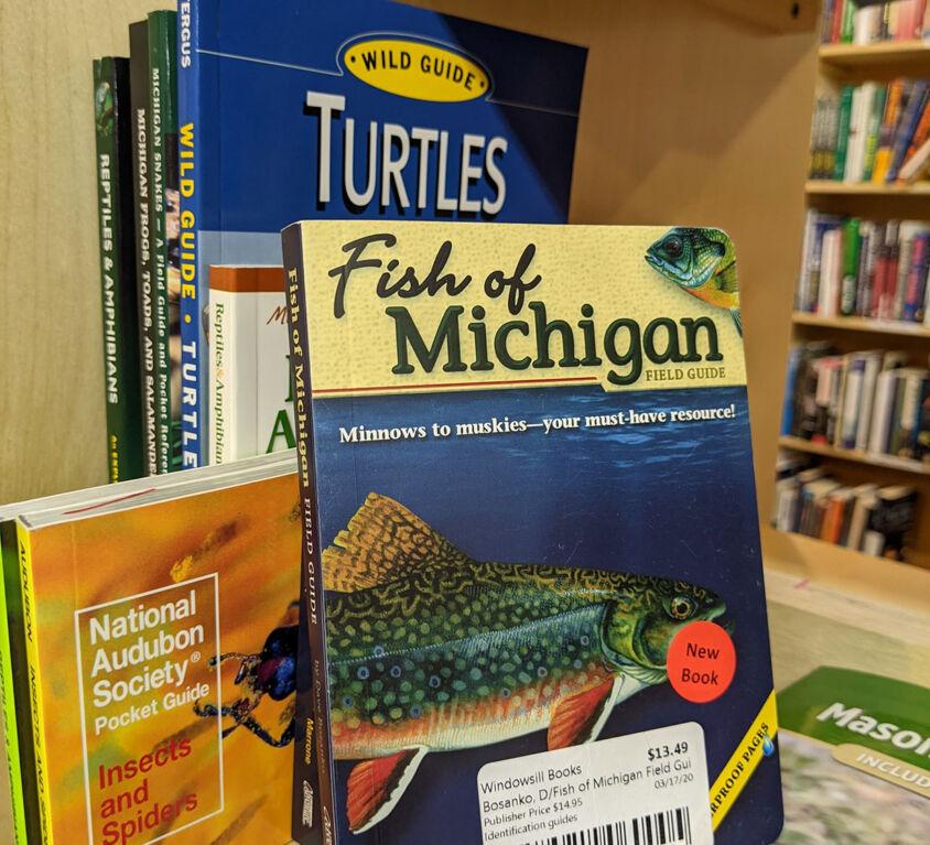 Identification Books @ Windowsill
