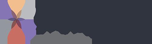 DS_Florida_Logo