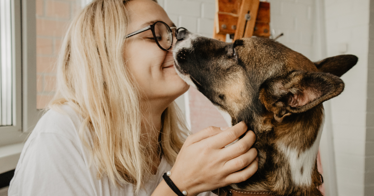 diabetes and pets