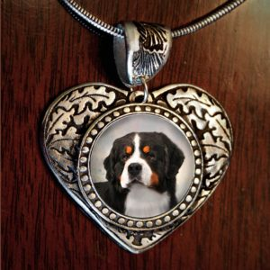 Bernese Heart Neck1