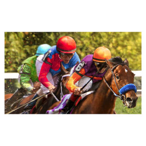 Horse Racing Floor Mat