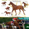 Justify by Breyer