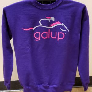 GalUp Crew Neck Sweatshirt Purple