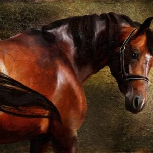 Bay Horse Canvas Print