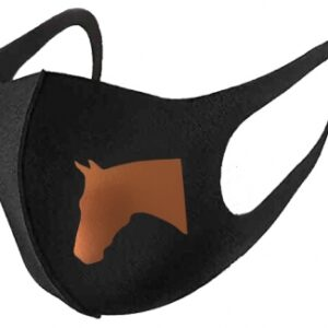 Horse Head Mask Copper